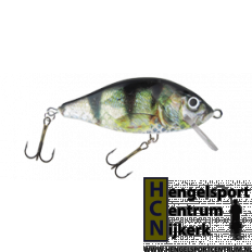 Hester Plug Prussian Carp KA 114 GOLD PERCH