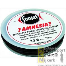 Sunset Amnesia nylon 100 meter