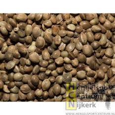 Sensas hennepkorrel jumbo 500 gram